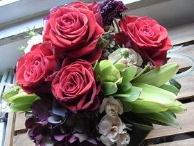 お祝いの花 ローズ、あじさい、リューカデンドロン など