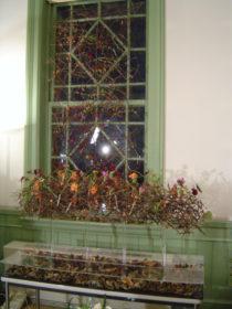 秋 枝のテーブルデコレーションとカーテン、枝、コスモス、アルストロメリア