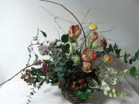 お祝いの花 アマリリス、ラナンキュラスetc