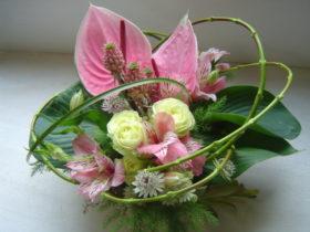 お見舞いの花:アンスリューム、パイン、ギボウシなど
