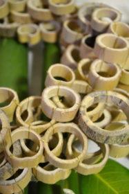 竹、リース、ワークショップ