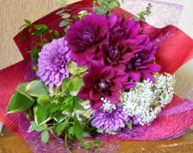 ダリア、レースフラワー、花束