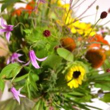 レッスン:夏の花束
