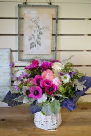 お誕生日ギフト,アネモネ,艶やかな花