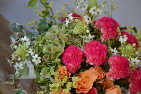 敬老の日,花